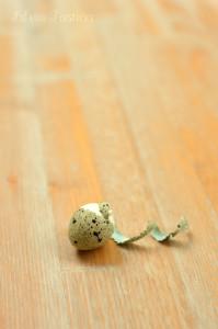 guscio-uovo