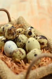 uova-quaglia